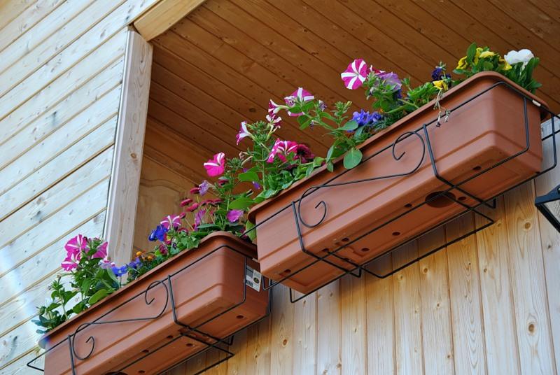 Подвесные кашпо для цветов на балкон