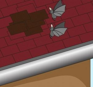Заделать все щели и дыры для перекрытия прохода вредителям.